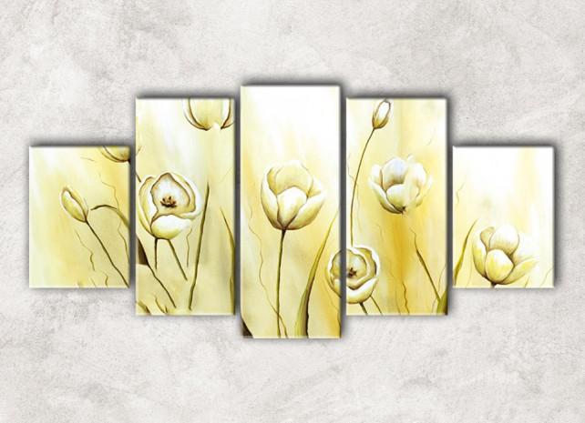белые тюльпаны с фоном
