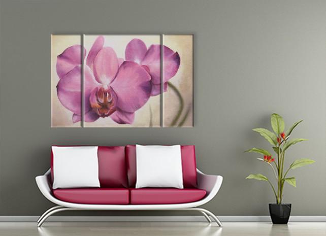 розовая орхидея 2