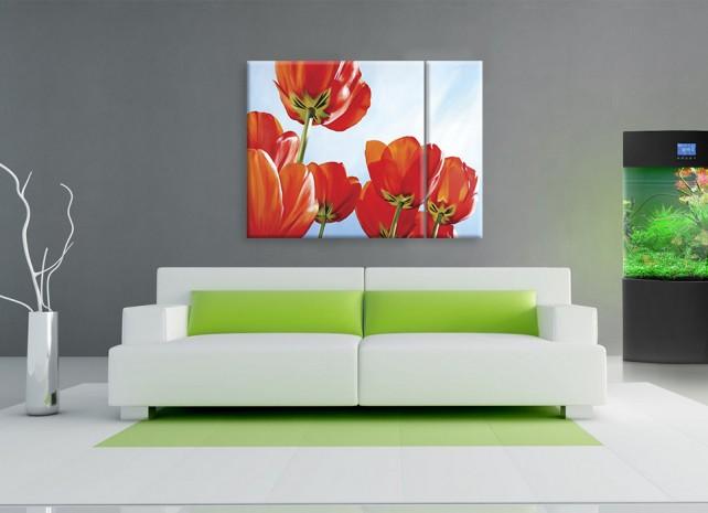 солнечные тюльпаны 2