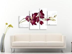 ветка орхидеи 1