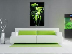 зелёные каллы 1