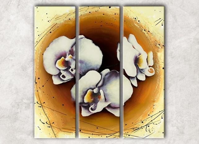 трио орхидей с фоном