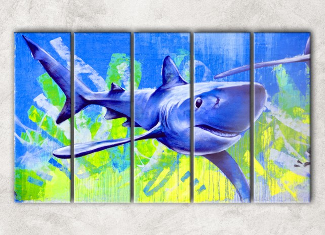 голубая акула сф