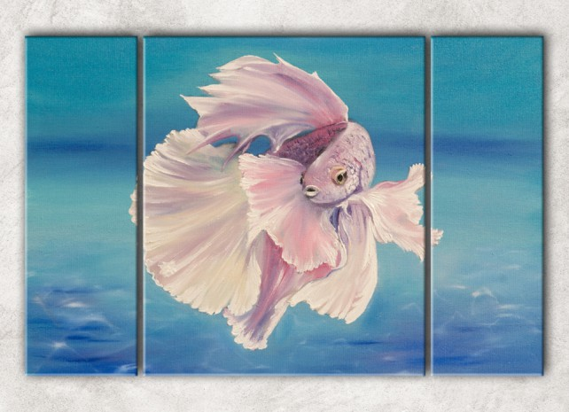 волшебная рыбка сф
