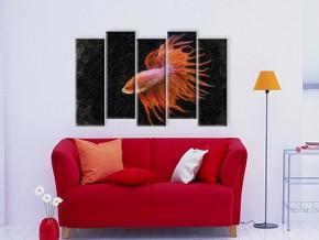 золотая рыбка 1