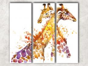 Жирафы сф