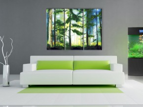 хвойный лес 1